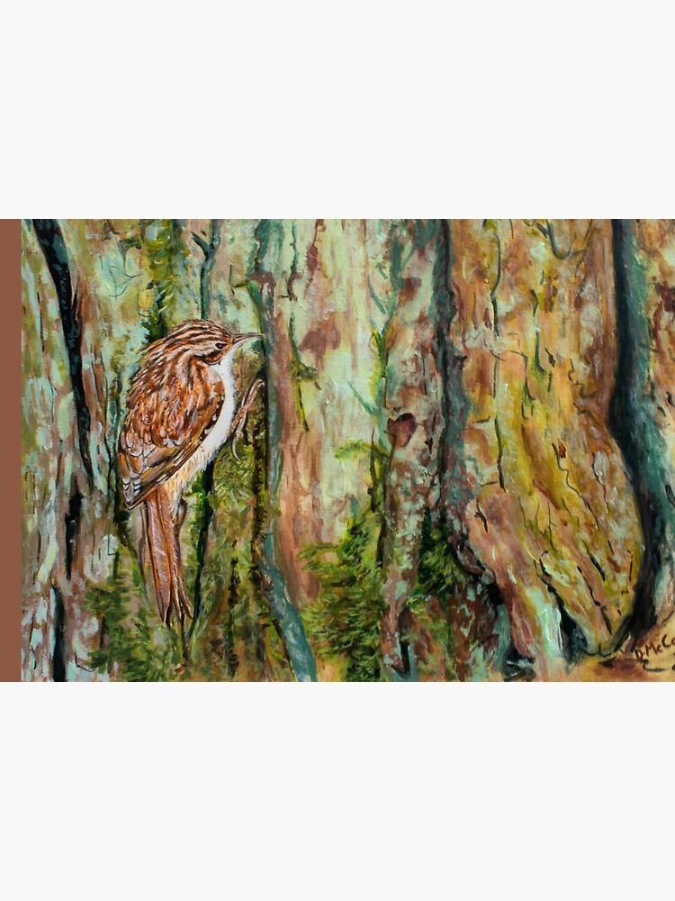Treecreeper by DawnsArt92