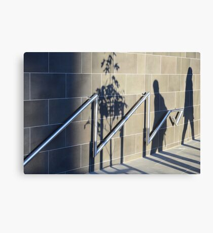 shadows that pass in sunlight Canvas Print