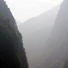 Foggy Day on the Yangtze by phil decocco