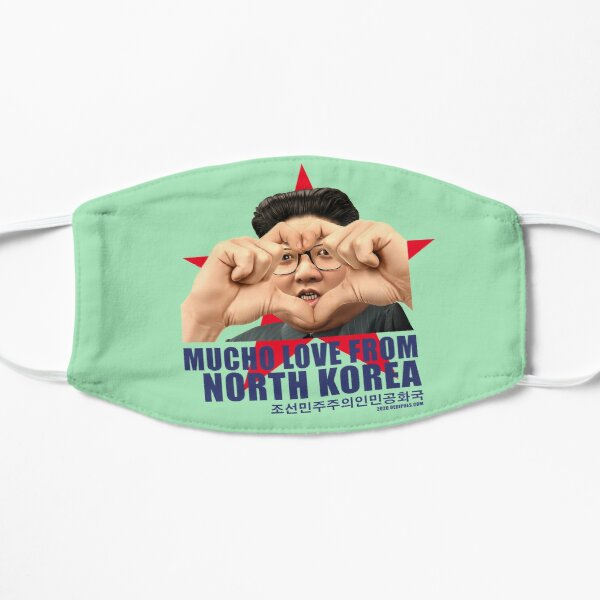 Mucho love from North-Korea mint green Mask