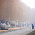 Chang Ping - 明十三陵 - Main sacred way to the Ming tombs. by Jean-Luc Rollier