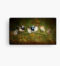 Fairy-wren Fantasy Canvas Print