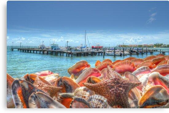 Marina at Montagu Beach in Nassau, The Bahamas by Jeremy Lavender Photography