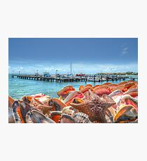 Marina at Montagu Beach in Nassau, The Bahamas Photographic Print