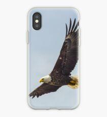 Alaskan Bald Eagle -1 iPhone Case