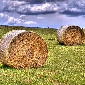 Hay Bales by johnah