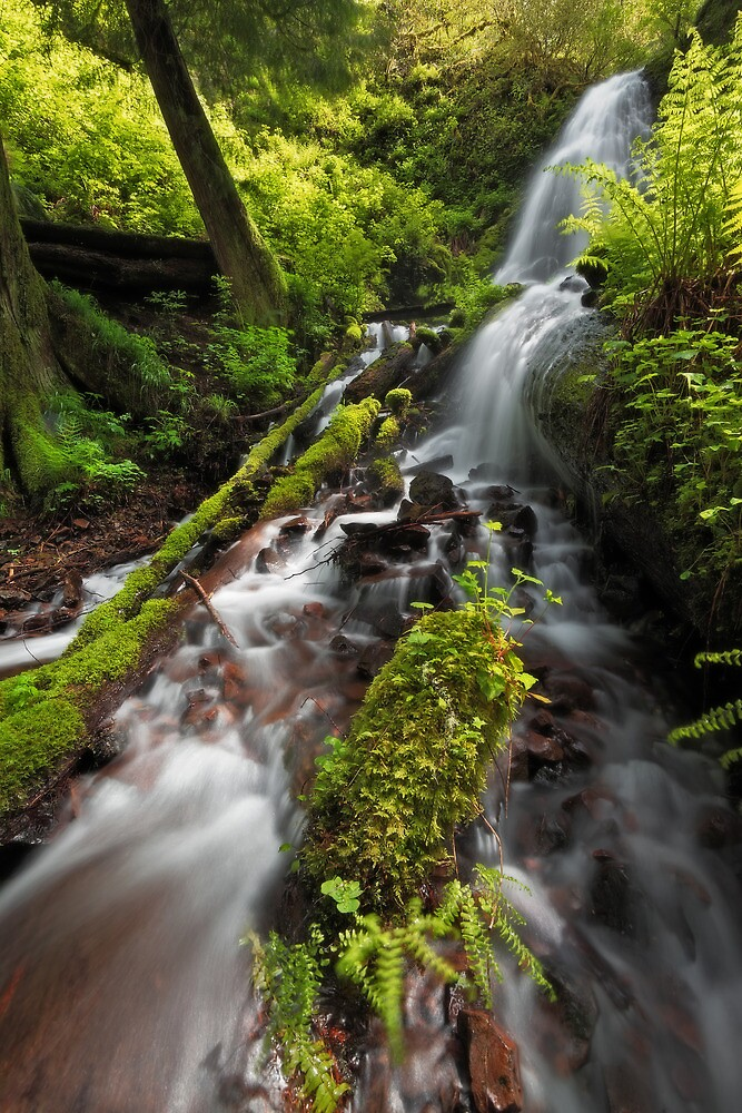 Fairy Falls V by Tula Top