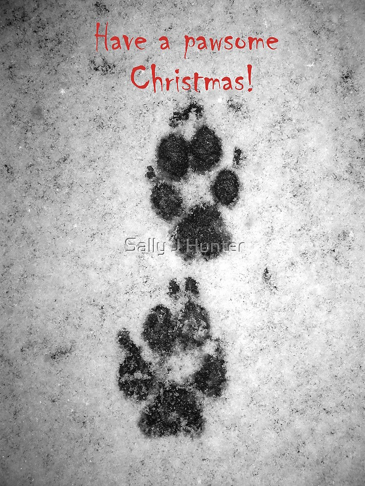 Pawsome Christmas! by Sally J Hunter