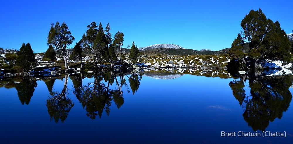 Hansons Peak through the Pencil Pines by Brett Chatwin (Chatta)