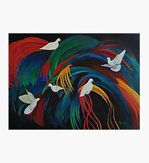 Doves on Fronds Photographic Print