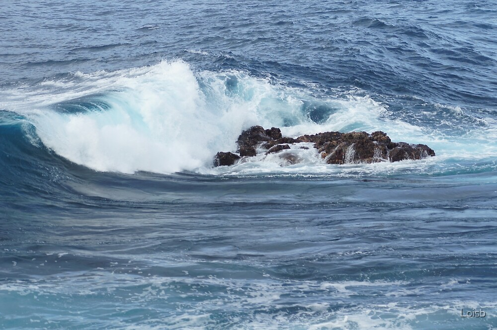 Waves in Hawaii by Loisb