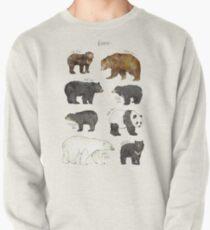 Bären Sweatshirt