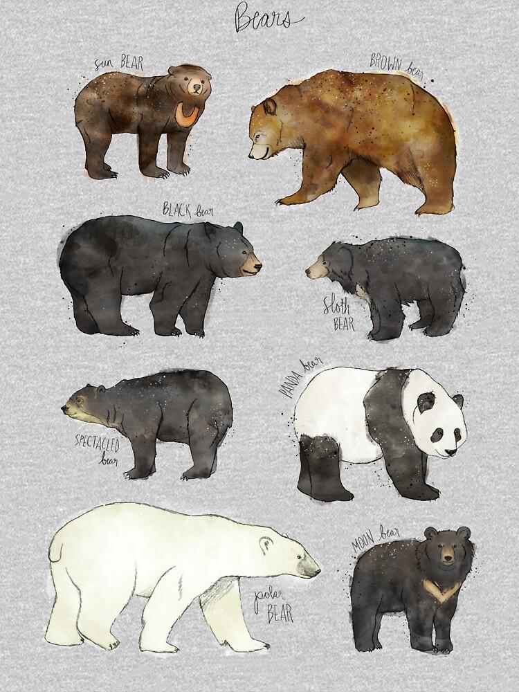 Bears by AmyHamilton