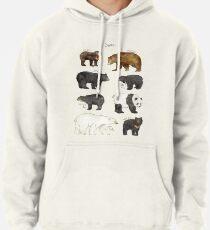 Bears Pullover Hoodie