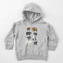 Bears Toddler Pullover Hoodie