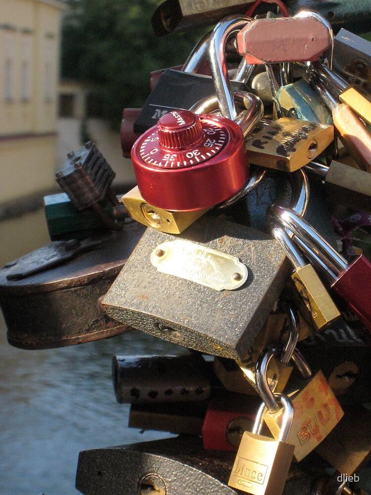 Lock Love by dlieb