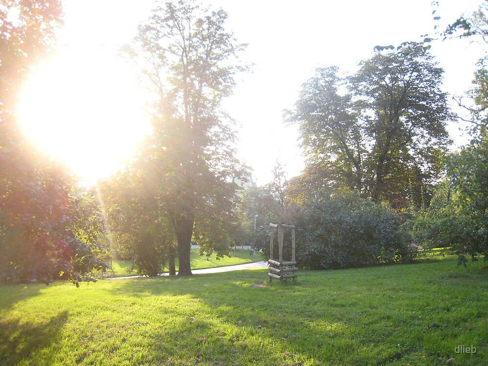 Sunset in Park by dlieb