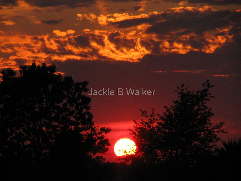 Jersey Sunset by Jackie Brock Walker