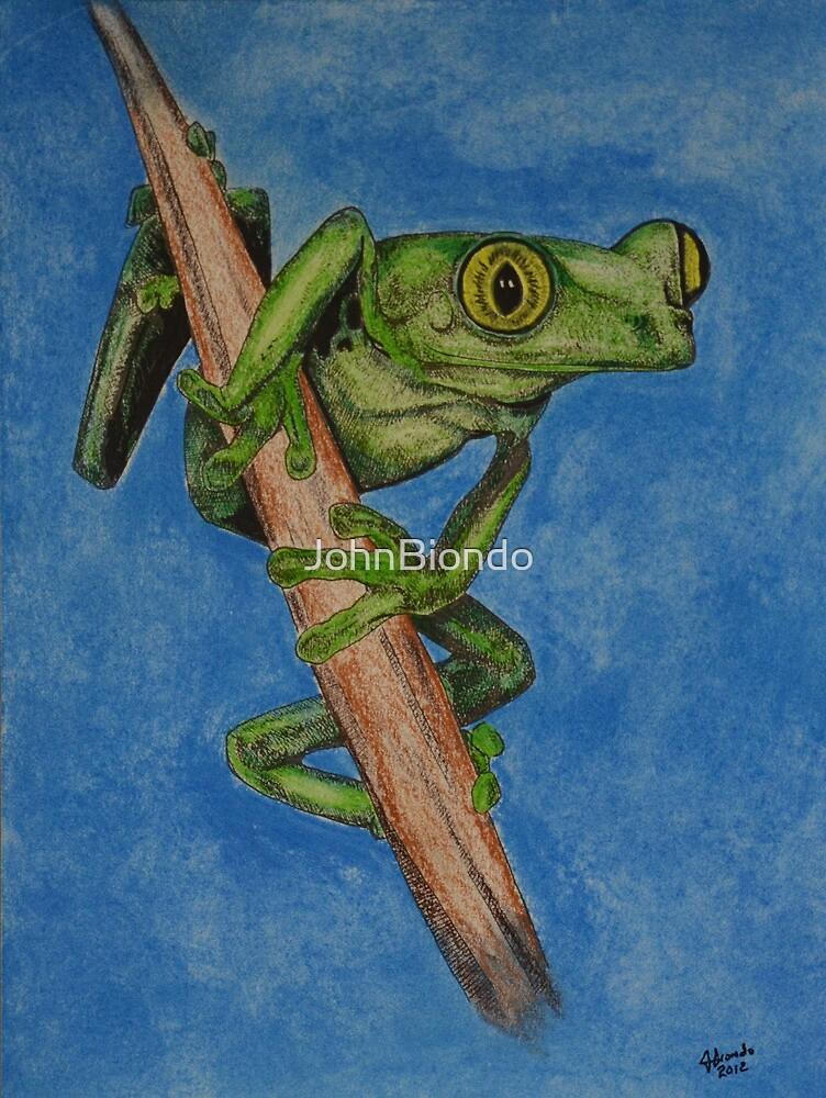 Tree Frog by JohnBiondo