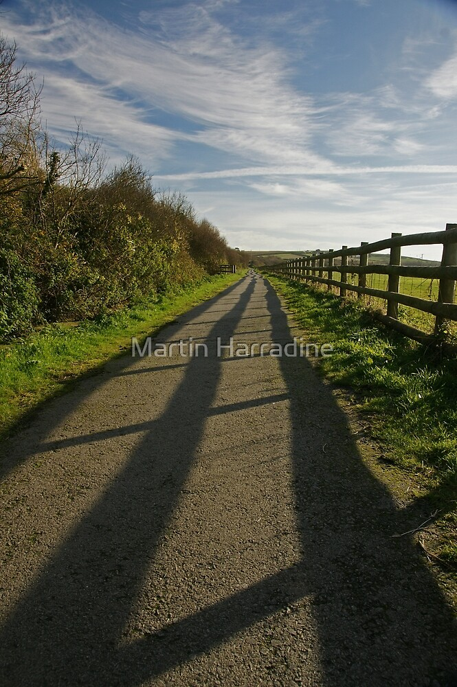 Winter Shadows by Martin Harradine