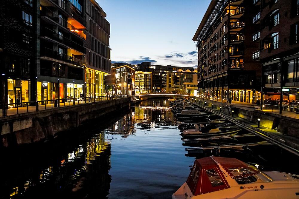 Oslo by Cristim