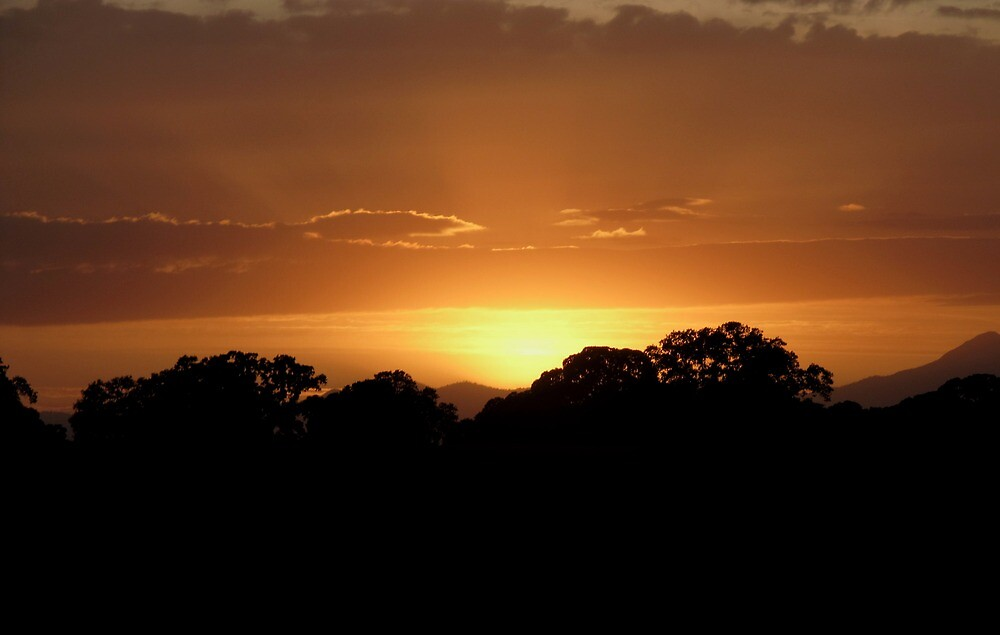 Chico Sunset by OffOn