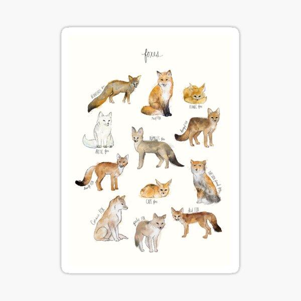 Füchse Sticker