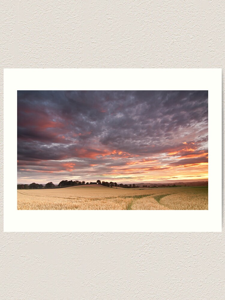Alternate view of Field with a bump Art Print