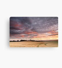Field with a bump Metal Print