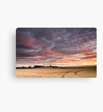 Field with a bump Canvas Print
