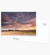 Field with a bump Postcards