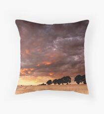 Sweeping past Throw Pillow