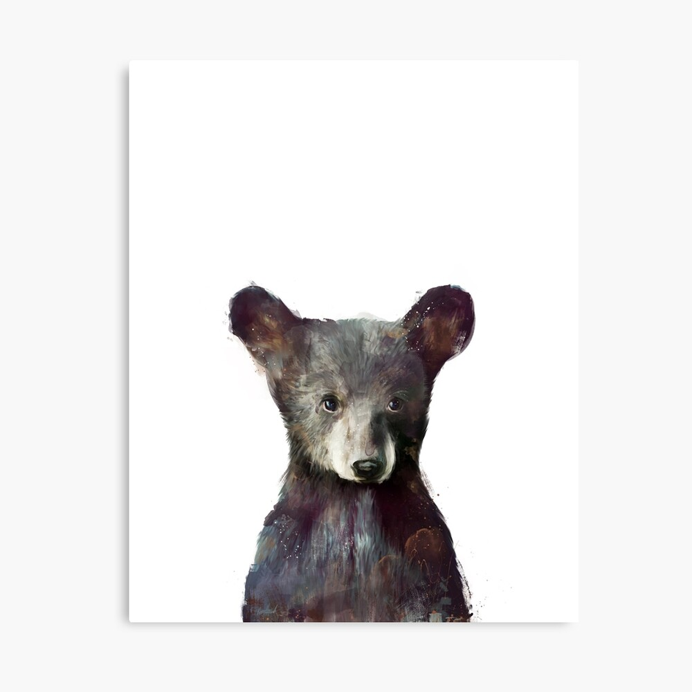 Kleiner Bär Leinwanddruck
