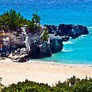 Turtle beach,Bermuda. by buddybetsy