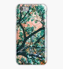 Blue Magnolia Tree iPhone Case/Skin