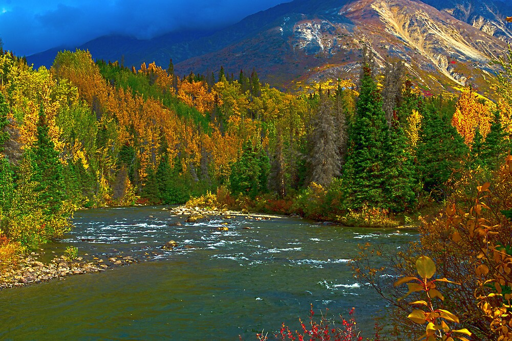 Takhanne River in Full Fall Coat by Yukondick