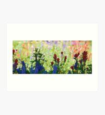 Wildflowers on the Pass Art Print