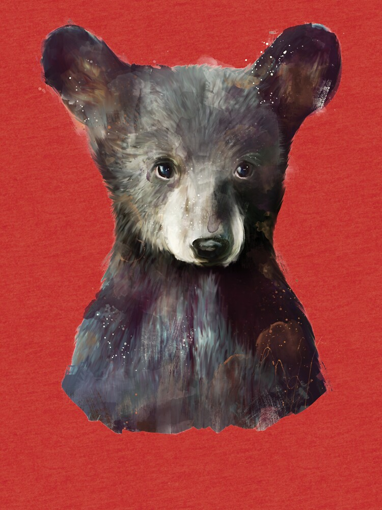 Kleiner Bär von AmyHamilton