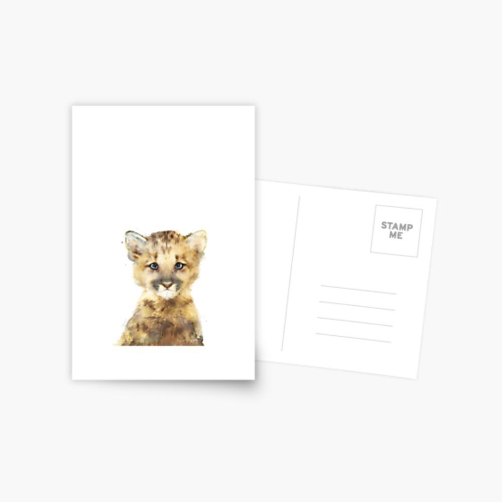 Little Mountain Lion Postcard