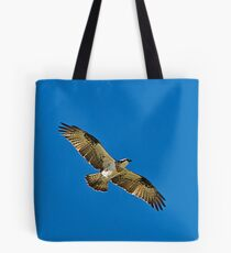 Osprey, Pandion Haliaetus Tote Bag