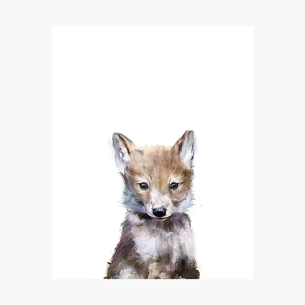 Little Wolf Photographic Print