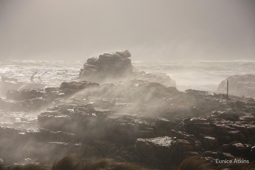Sea spray by Eunice Atkins