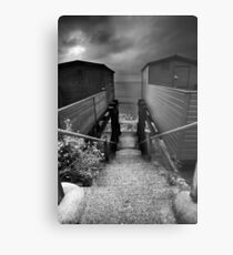 Between You and Me, Steps Have Been Taken... BW Metal Print