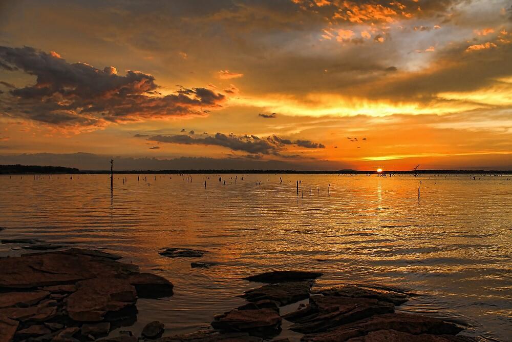 A Lovely Night by Carolyn  Fletcher