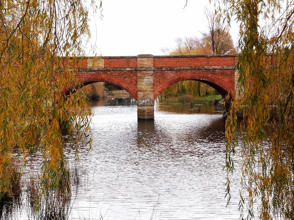 the red bridge in autumn by Alenka Co