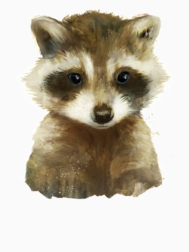 Little Raccoon by AmyHamilton