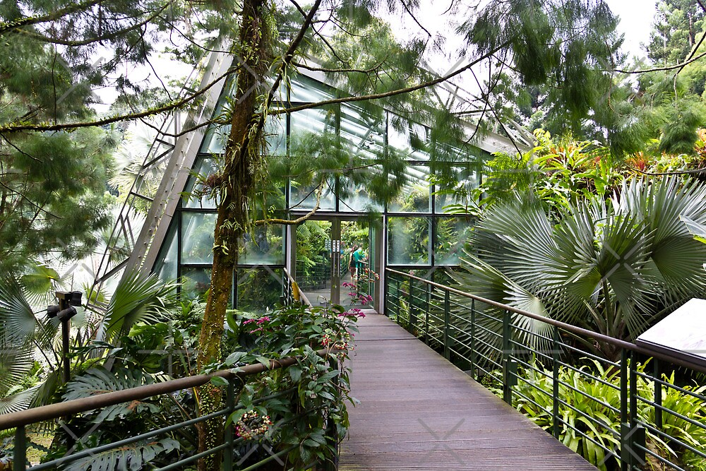 Cool house inside the National Orchid Garden in Singapore by ashishagarwal74