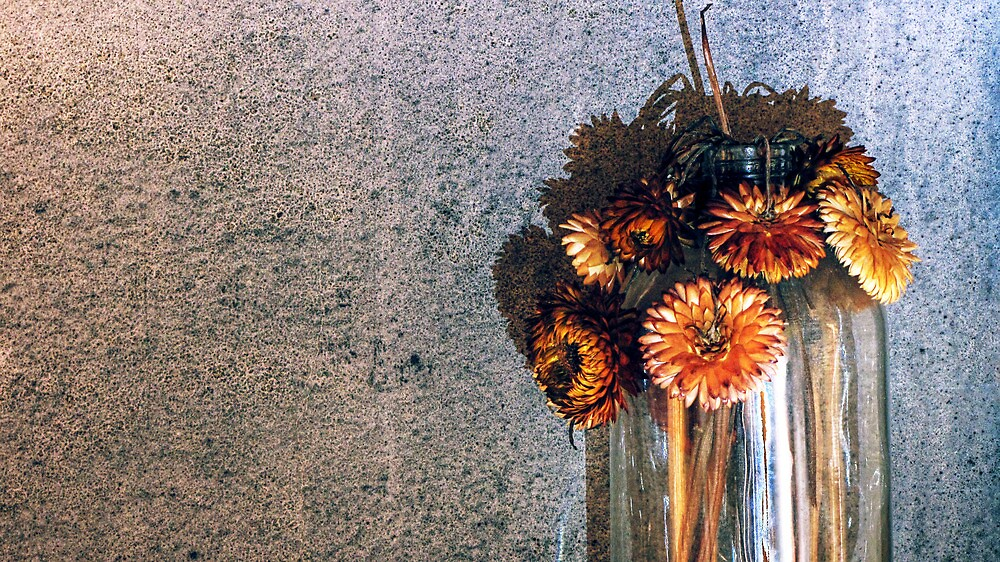 5.9.2012: Old Flowers by Petri Volanen