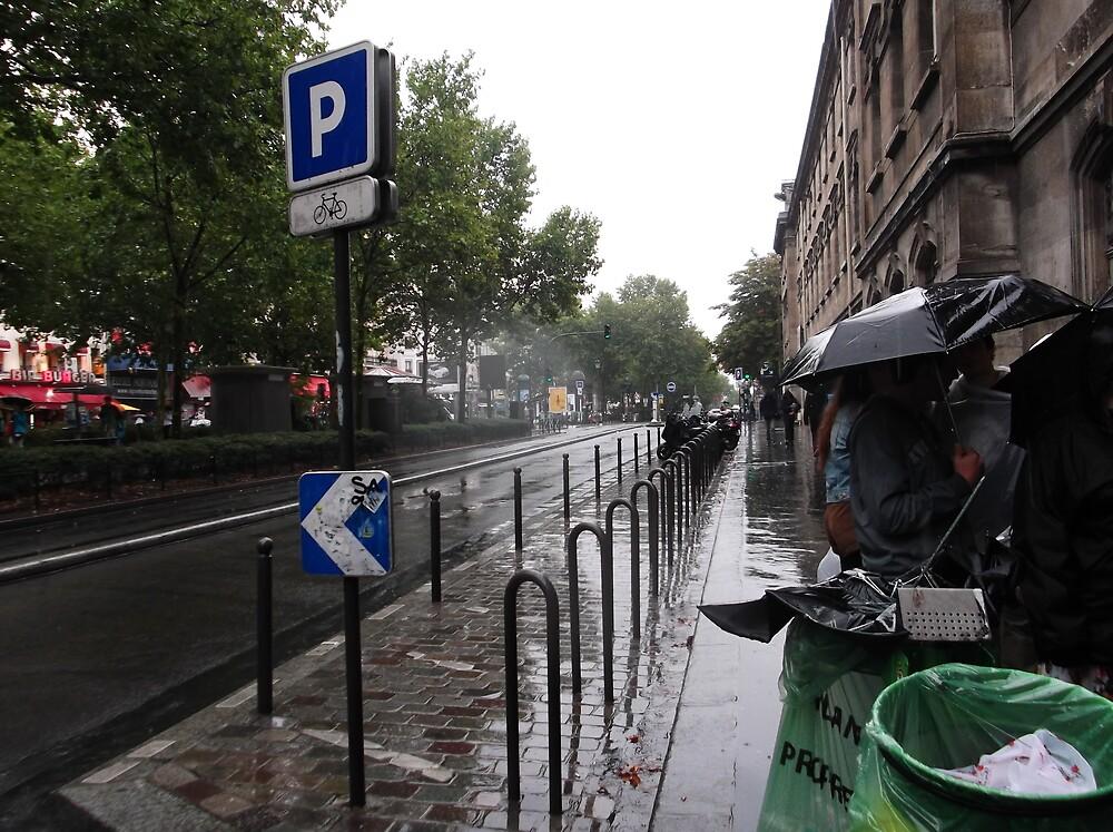 Paris in the Rain  by j0eyR4mone