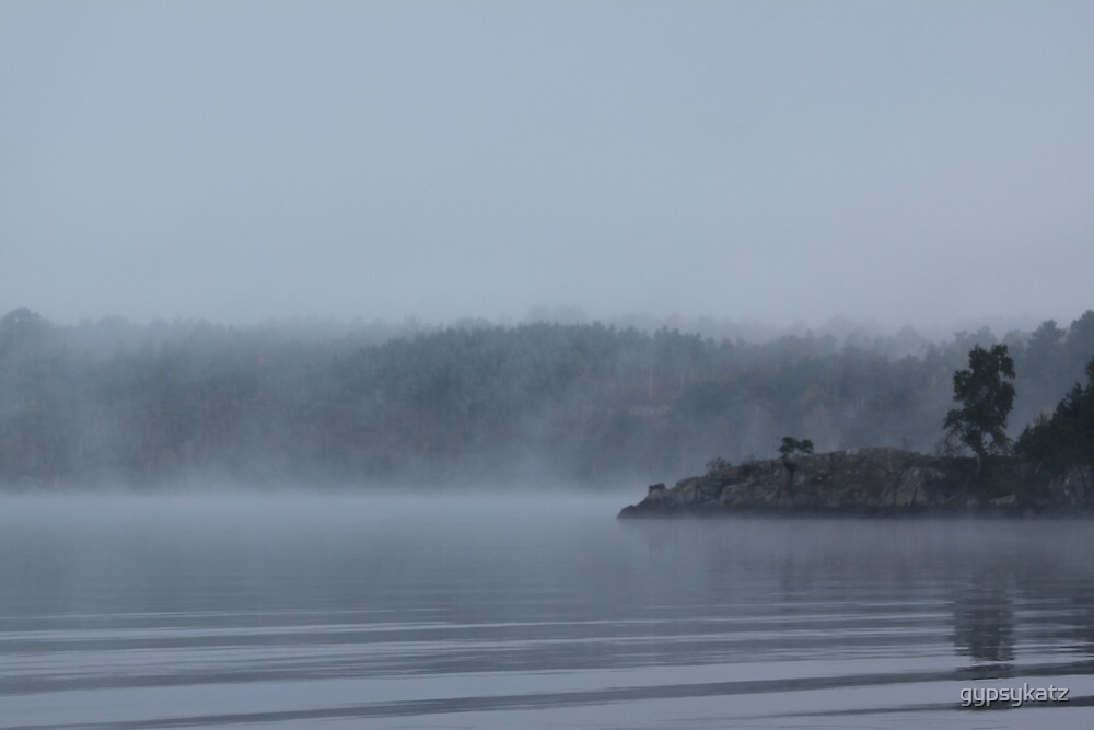 Foggy Morning Fishing  #8 by gypsykatz
